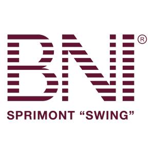 BNI Swing