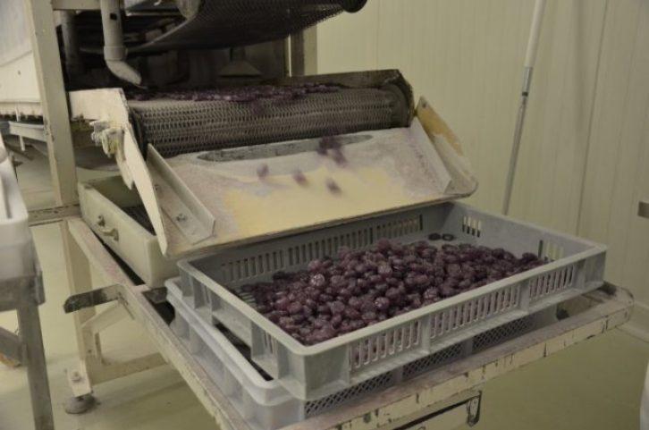 Gicopa photo fabrication de la Violette